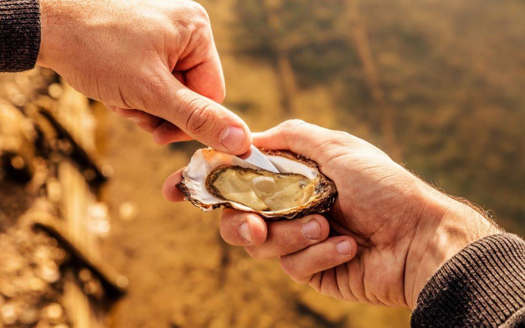 Huîtres : quels sont leurs bienfaits ?